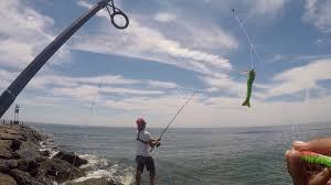 Barnegat Light Jetty Fishing Report Shore Fishing For Fluke Using Gulp Products Barnegat Light Nj