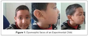 developmental psychology research paper topics   Elaborate Developmental Psychology Research Paper Topics Study com