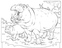 Small Picture Cute Hippo Coloring Sheets Pages For Kids Printable vonsurroquen