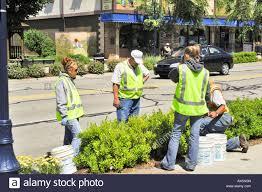college students working summer jobs gardening and street tidying college students working summer jobs gardening and street tidying