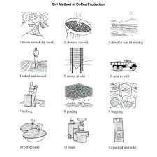 Coffee Production Process Flow Chart The Illustrations Below Show How Coffee Is Sometimes Produce