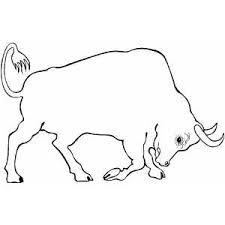Small Picture Bull Coloring Page