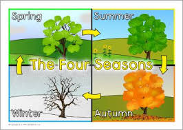 4 Seasons Chart The 4 Seasons Of The Year Lessons Tes Teach