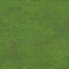 Soccer field grass Natural Grass Grass Soccer Field Free Stock Photos Download 5039 Free Stock Photos For Commercial Use Format Hd High Resolution Jpg Images Creative Market Grass Soccer Field Free Stock Photos Download 5039 Free Stock