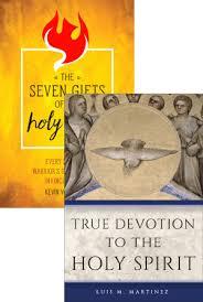 holy spirit set book cover