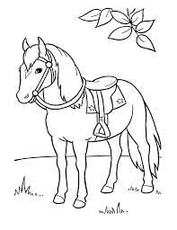 Small Picture Horse Outline Drawings And Coloring Pages horse drawing pages