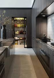 modern black kitchens.  Modern View In Gallery Modern Black Kitchen Pantry And Black Kitchens