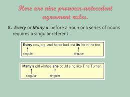 Pronoun Antecedent Agreement Pronoun Antecedent Agreement Englishstarter