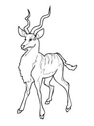 Small Picture Kudu Antelope With Cartoon Style Coloring Page Animal Images