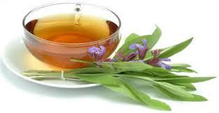 Resultado de imagem para imagens de chá de salvia