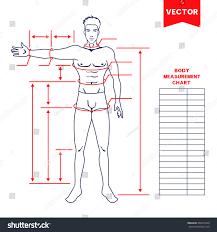 Bodybuilding Body Measurement Chart Bodybuilding Measurement Chart 2019
