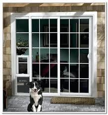 sliding screen doggie door electronic patio pet door image collections glass door design sliding screen door for dogs sliding screen door pet door insert