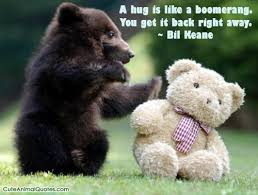 cute animals quotes. Simple Cute Animal Quotes Image On Cute Animals Quotes