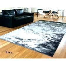 4x6 rugs target