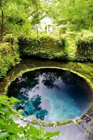 228 best Natural Pool & Pond Designs images on Pinterest | Backyard ponds,  Natural swimming pools and Waterfalls