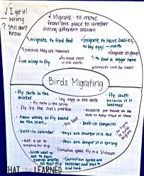What Is Expository Text Organize Facts Informational Writing Week 5 Bird Migration