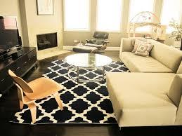 homegoods area rug rottypup regarding home goods rugs decor 19