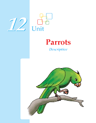 grade descriptive essay parrots composition writing skill writing skill grade 3 parrots 1