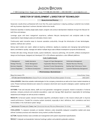 Director Of Information Technology Resume Sample Sample Resume Of Information Technology Manager Save Sample Resume 1