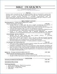 Hybrid Resume Template Resume Example