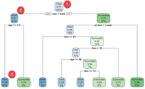 Tree Root Depth Chart Decision Tree In R With Example