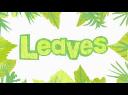 Download Mp3 Fruit Tree Leaves Identification Chart 2018 Free