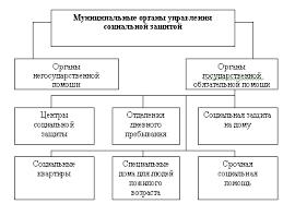 Реферат Социальная защита граждан пожилого возраста в РФ  Социальная защита граждан пожилого возраста в РФ