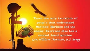 Marines Quotes Magnificent Top 48 Quotes About Marines Marine Patriot Blog
