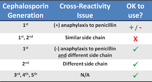 Cross Reactivity Chart Umem Educational Pearls University Of Maryland School Of
