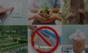 what is the need of environmental protection essaycorp ways to save nature and protect the environment