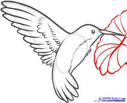 simple hummingbird drawing. Plain Drawing View Original Size Hummingbirds And Flowers Drawing Wallpaper For Simple Hummingbird