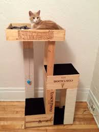 another picture of make your own cat tree