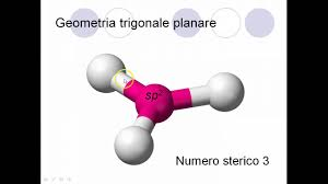 Risultati immagini per struttura planare trigonale