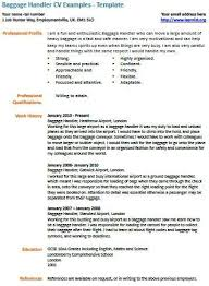 Baggage Agent Resume Dos And Donts Of Writing An Essay