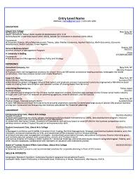 Fortune 500 Resume Examples Best Of Entry Level Consultant Sample