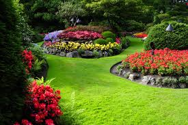 Small Picture Beautiful garden Stock Photo Backgrounds stock photo free download