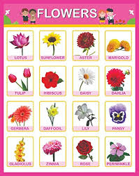 Paper Plane Design Paper Flowers Educational Charts For Kids