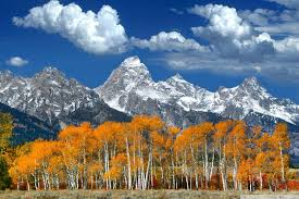 autumn mountains backgrounds. Simple Autumn Tablet  And Autumn Mountains Backgrounds V