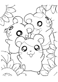 Happy Hamsters With Sun Flower Coloring Advice For Your Home