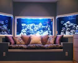 ... wall-aquarium (14) ...
