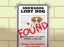 012 Missing Poster Template Awesome Lost Dog Flyer Maker Thevillas