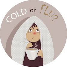 Image result for fight the flu poster