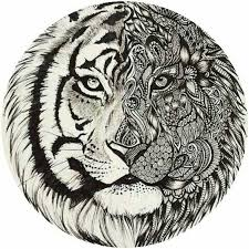 colorings co coloring pages tiger coloring pages tiger