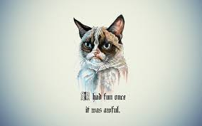 Angry cat quotes tumblr Grumpy cat ...