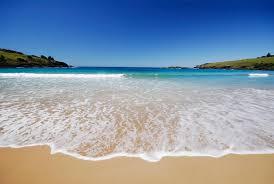 spirit s top 5 beach essentials