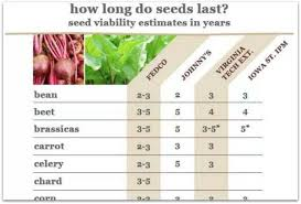 Estimating Viability How Long Do Seeds Last A Way To Garden