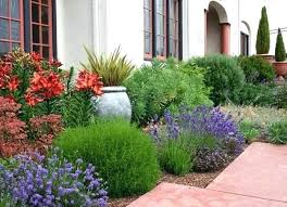 drought tolerant garden. Drought Tolerant Garden Plans Plant A Ideas For Your Homesteads Landscape D