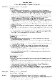 Digital Strategist Resume Marketing Strategist Resume Samples Velvet Jobs