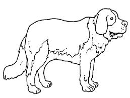 Disegni Da Colorare Animali Domestici Disegni Per Bambini