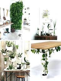 indoor window garden. fall indoor window garden minnesotafromscratch ideas 0